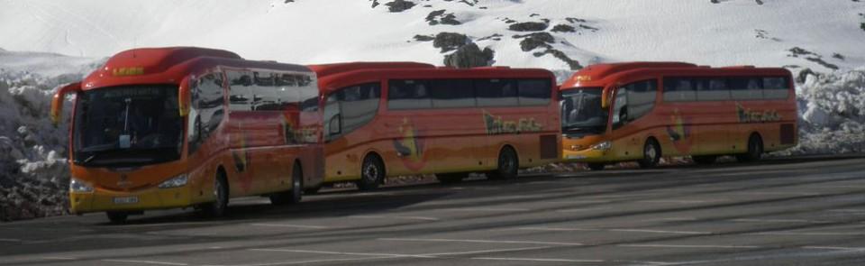 Flota de autobuses